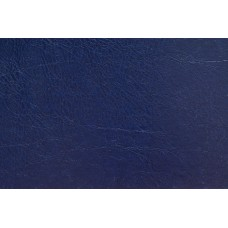O.hard Cover 304х212 темно-синий Mundial /10 пар./ A4 WE