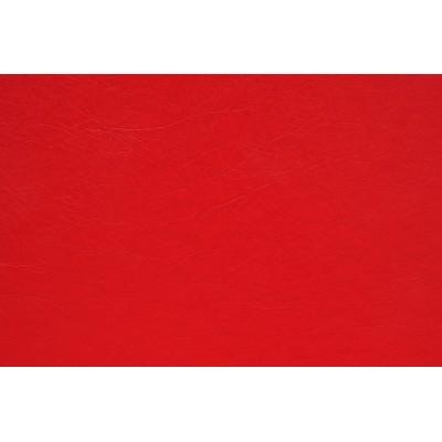 O.hard Cover 304х423 красные Mundial /10 пар./ A3+ WE