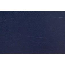 O.hard Cover 304х423 темно-синие Mundial /10 пар./ A3+ WE